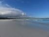 Tortuga beach, Isla Santa Cruz